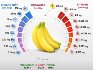 Thành phần dinh dưỡng của chuối gồm những gì?