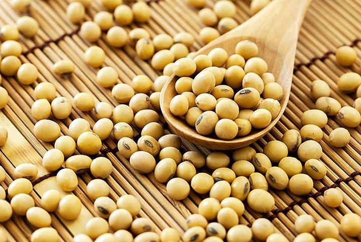 Đạm từ đậu nành rất có lợi cho sức khỏe