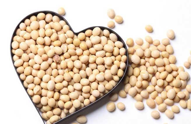 Đậu nành rất có lợi cho tim mạch